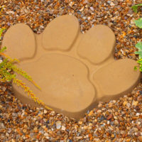Animal-Paw-Stepping-Stone-B