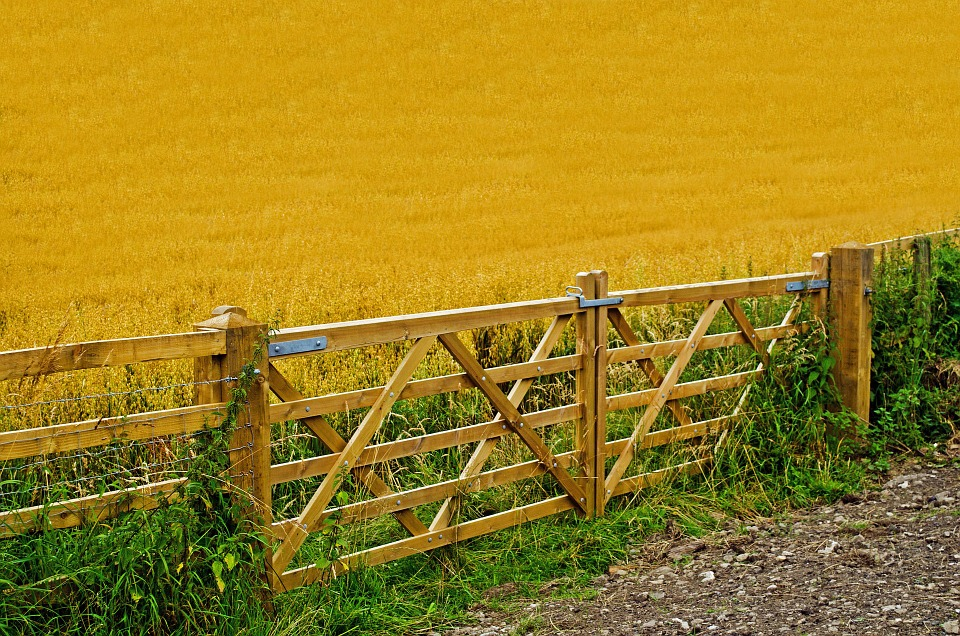 agriculture-header-image